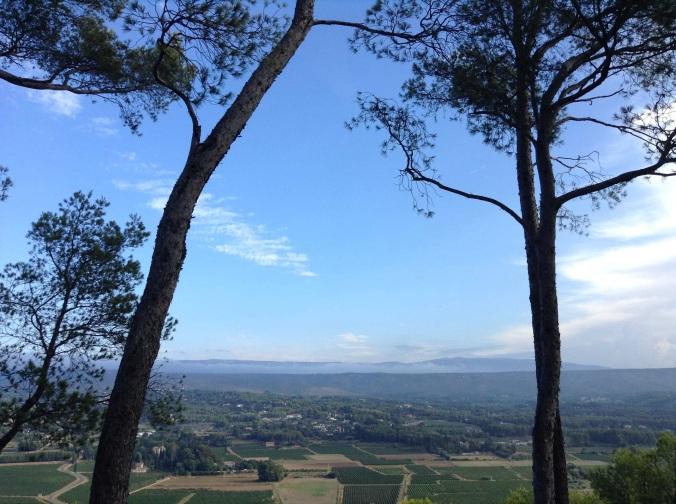 The vineyards of Le Castellet from La Cadiere D'Azur